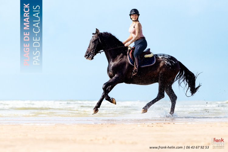 Shooting photo de chevaux sur la plage de Marck dans le Pas-de-Calais